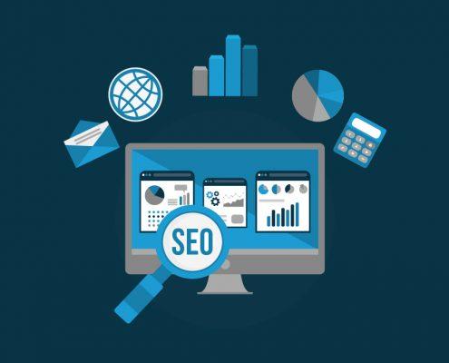 BluCactus - SEO Web Positioning Agency