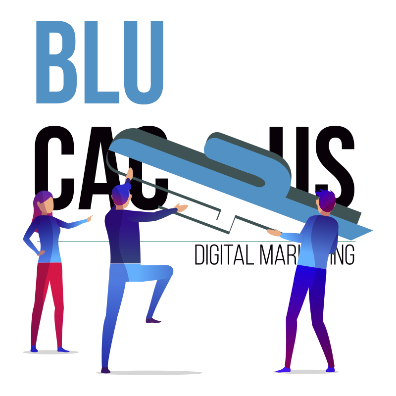 BluCactus - Two guys carrying the BluCactus Symbol into the BluCactus Logo to complete the Graphic Design