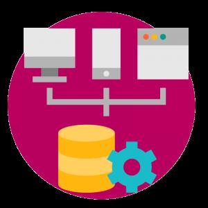 BluCactus Consider well-integrated software development