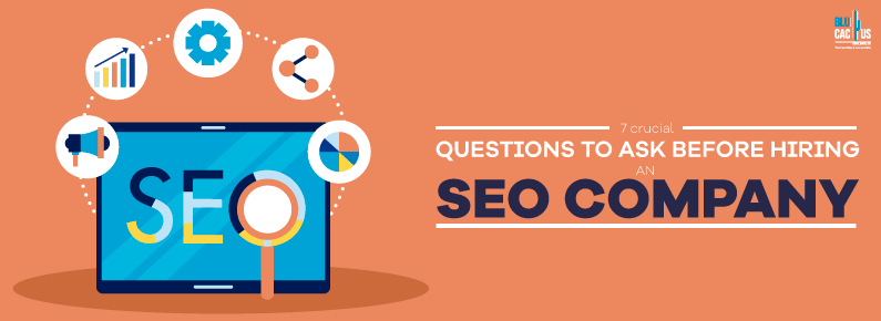 BluCactus - 7 crucial questions to ask before hiring an SEO company