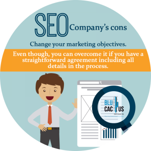 BluCactus / 7 Questions before hiring an SEO company / person