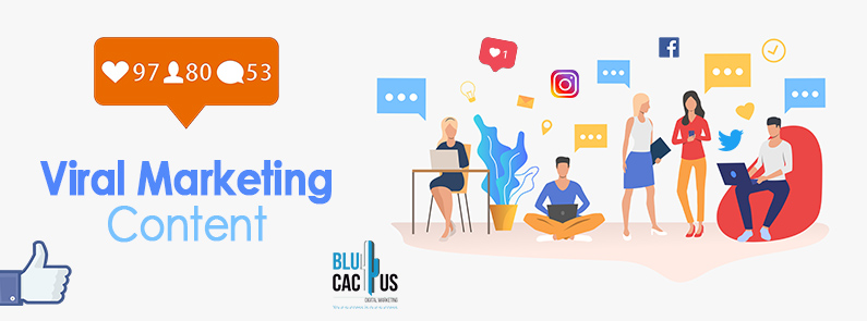 BluCactus - Banner Viral Marketing Content