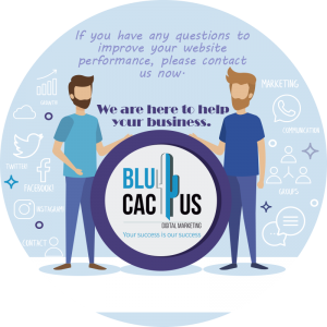 BluCactus - How to increase visitors to your website? - conclusion