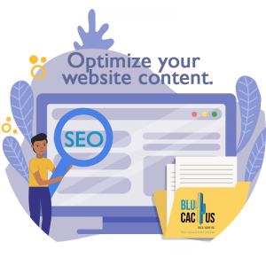 BluCactus - How to increase visitors to your website? - seo