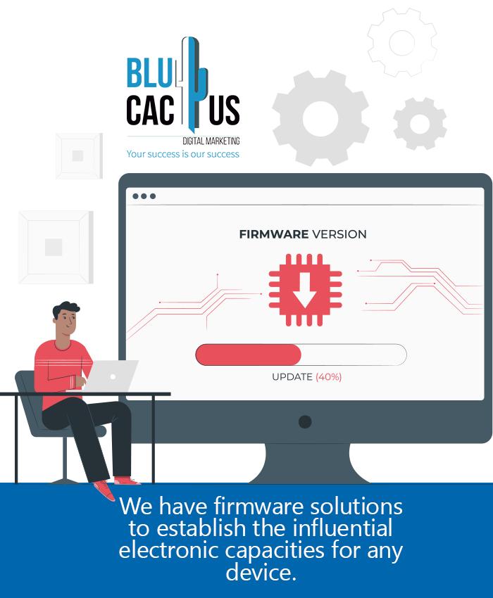 BluCactus - Software Engineer doing Firmware update