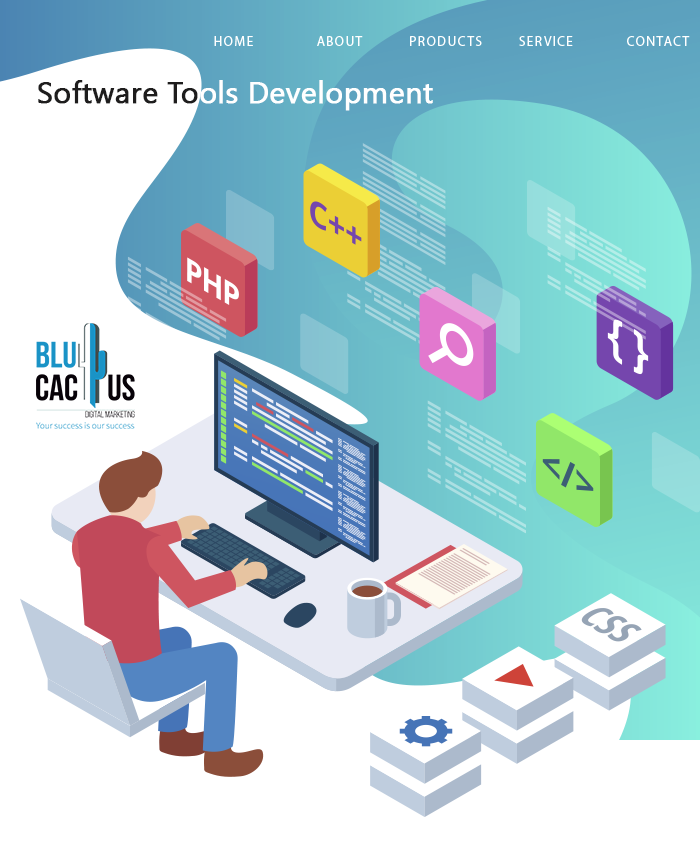 BluCactus - Software Developer programming in C++ and PHP