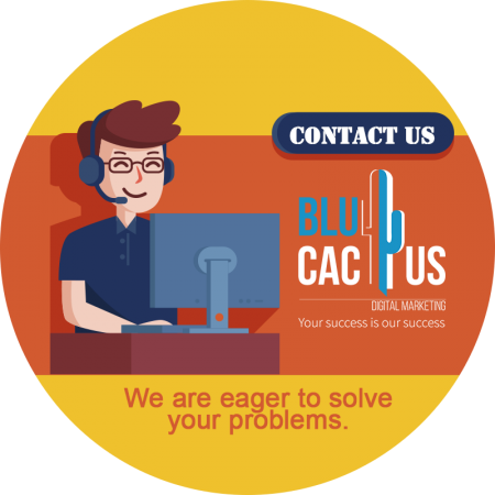BluCactus - Why should you contact us for Software Development?