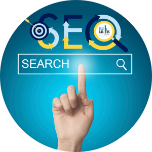 BluCactus - seo search services