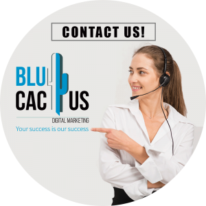 BluCactus - Marketing Strategies for Restaurants - contact us