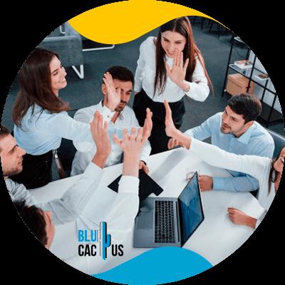 BluCactus - teamwork
