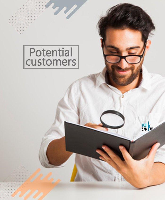 BluCactus - Logo Design Process - The design briefing