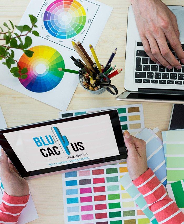 BluCactus - Logo Design Company - Functional Design
