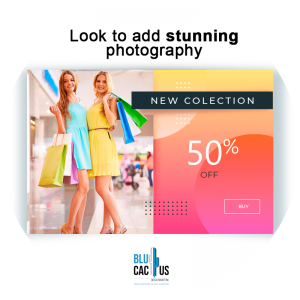 BluCactus - What is an Efficient and Impact Brochure? - discount with the 50 percent