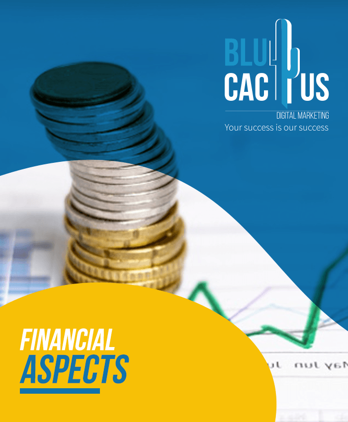 BluCactus - Finacial Aspects