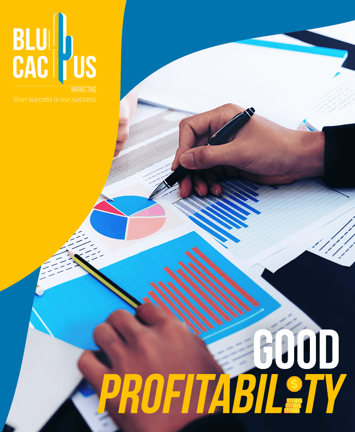 BluCactus Brochure Design Agency - Good profitability
