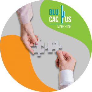 BluCactus-How-to-measure-brand-awareness-Bet-on-collaborations-and-referral-traffic
