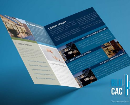 BluCactus Real State Company Brochure Template