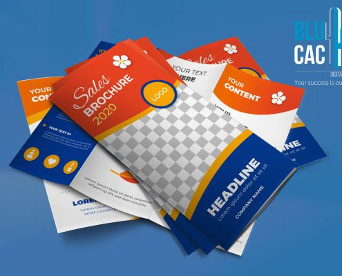 BluCactus Sales Tri Fold