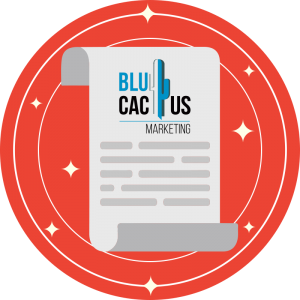 BluCactus-Why-is-SEO-so-important-for-my-website-12-Conclusion