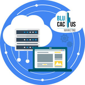 BluCactus-Why-is-SEO-so-important-for-my-website-Choose-a-good-hosting.