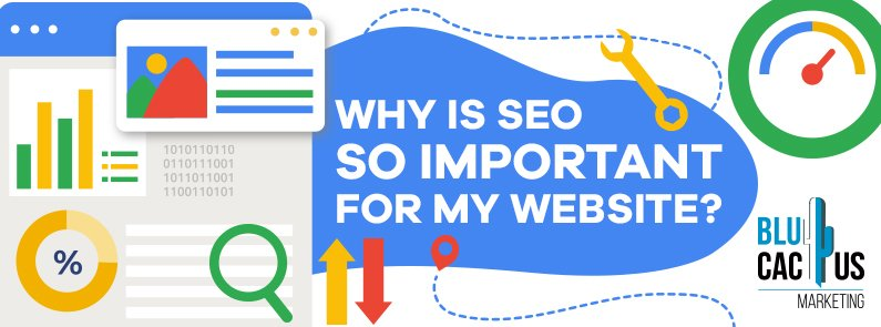 BluCactus - Why is SEO so important to my website? - title