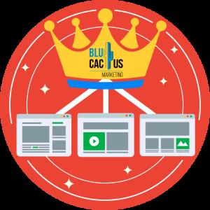 BluCactus-Create-quality-content.