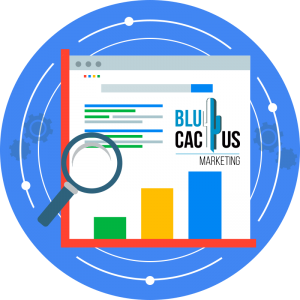 BluCactus - Why is SEO so important to my website? - google search with the logo of blucactus
