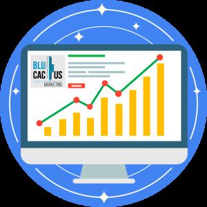 BluCactus-Web-optimization