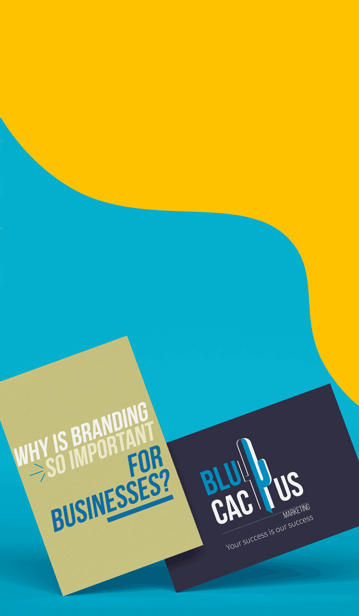 BluCactus - Why is Branding so important for business?