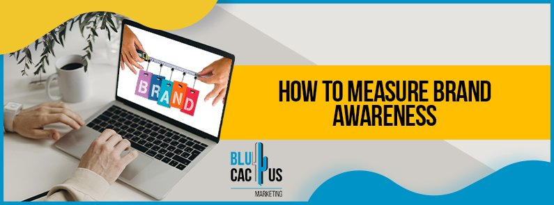 BluCactus -How to measure brand awareness - title