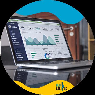 BluCactus -How to measure brand awareness - computer working