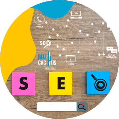 BluCactus - What is SEO Positioning? - companies