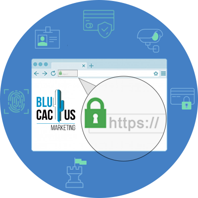 BluCactus - a landing page opne of a marketing agency