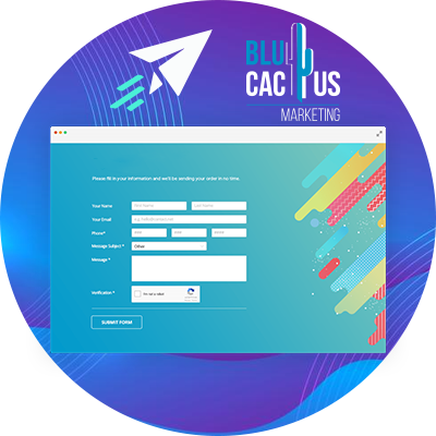 BluCactus - a landing page open to fill information