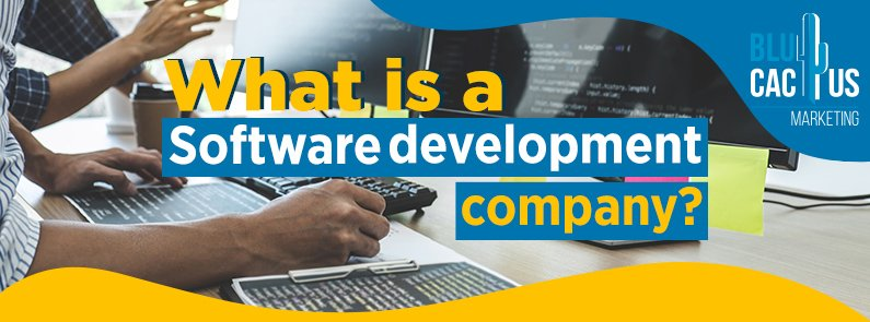 BluCactus - What is a Software Development Company? - title