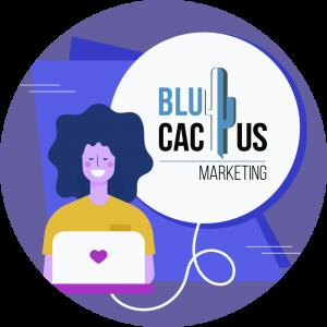 BluCactus - contact us information