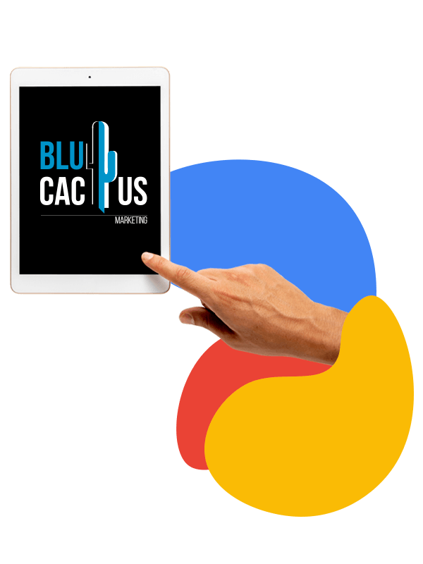 BluCactus - Meet your business goals