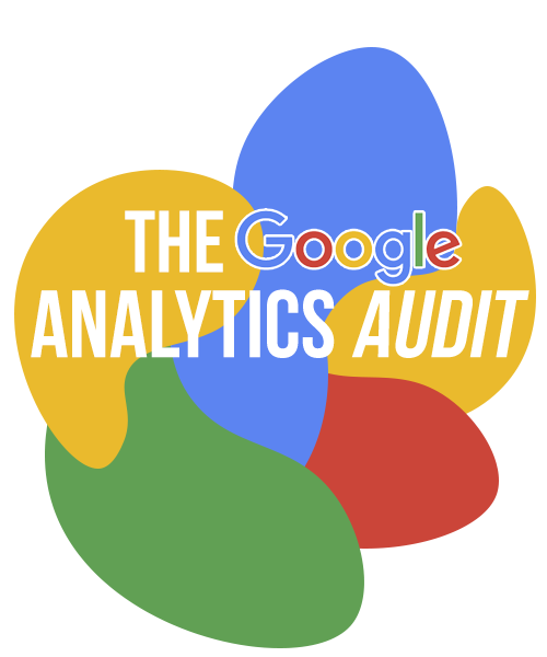 BluCactus - The Google Analytics Audit