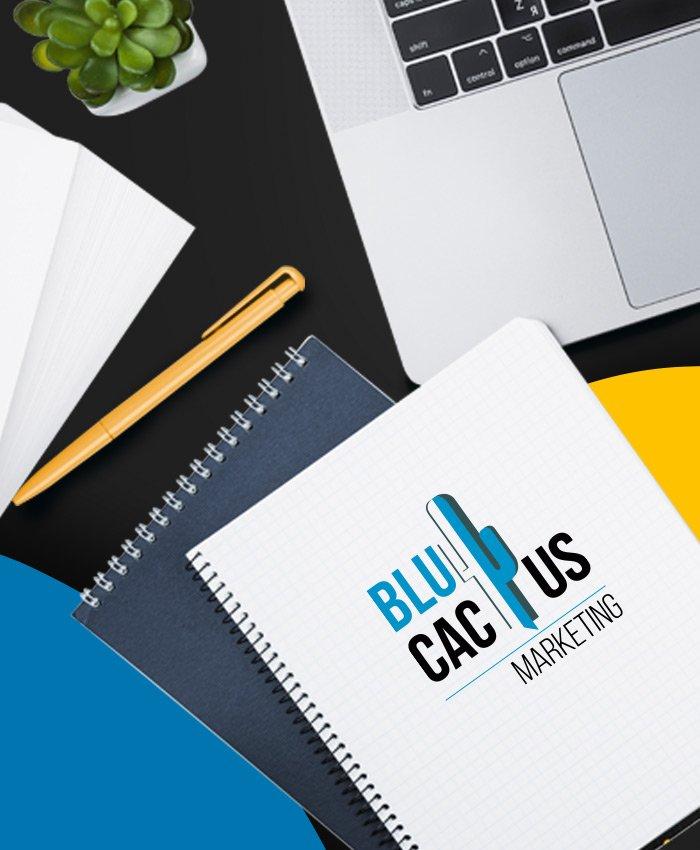 BluCactus - Web-Design