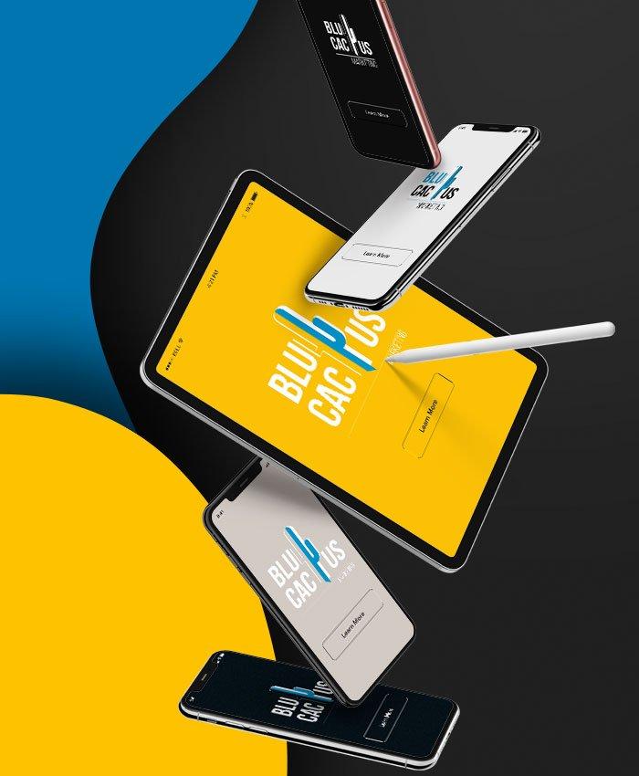 BluCactus - Responsive Web Design Company