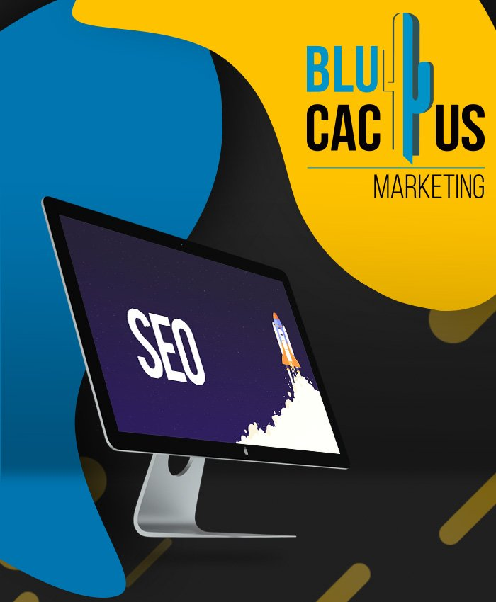 BluCactus - Search Engine Optimization SEO