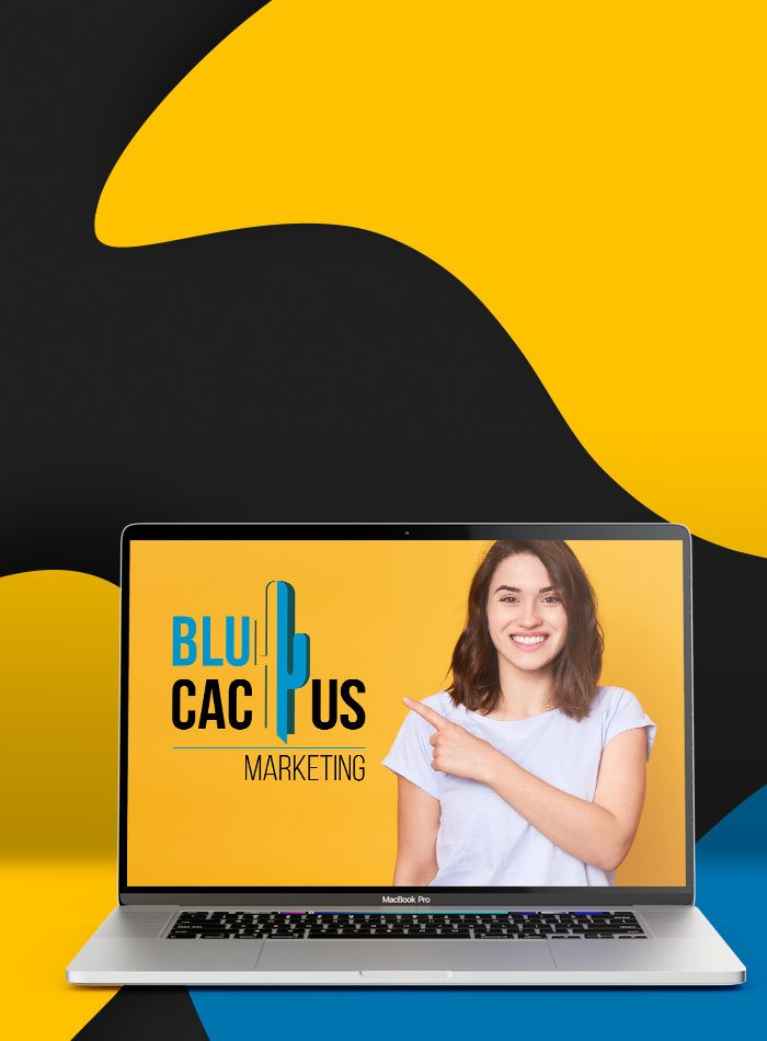 BluCactus - Solid navigation