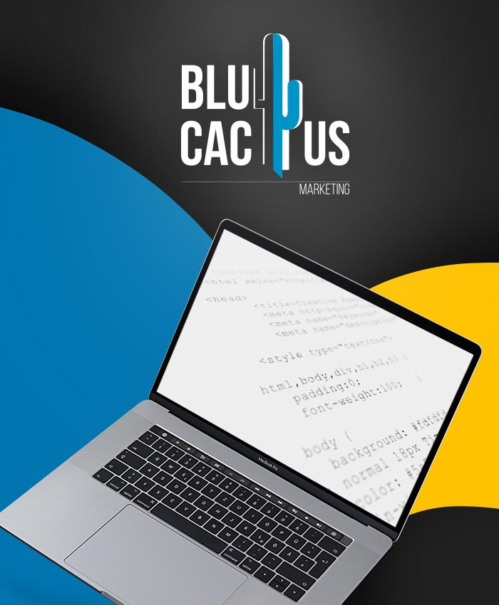 BluCactus - Web Coding and Development