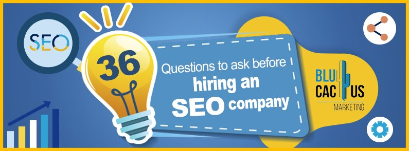 BluCactus - 39 questions to ask before hiring an SEO agency - title