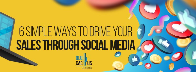 BluCactus - drive your sales through Social Media - title