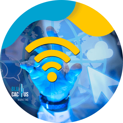 BluCactus - web hosting - bandwidth