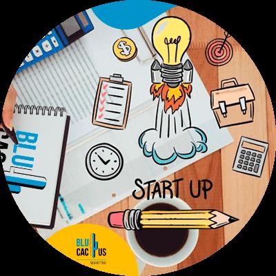 BluCactus - start up