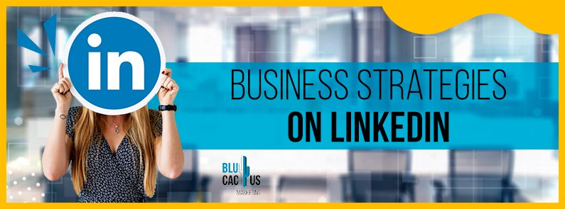 BluCactus - LinkedIn Business strategies - title