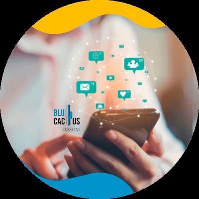 BluCactus - Community manager - pixelmatrol
