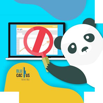 BluCactus - panda to search
